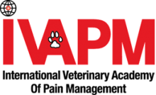 ivapm-logo