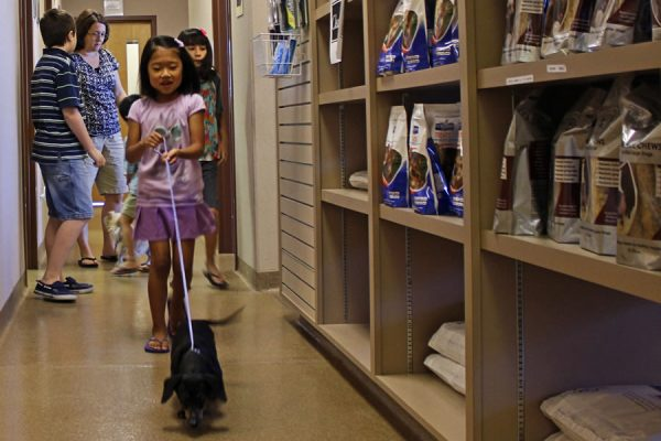 A little girl walking out her black dachshund past the pet food display